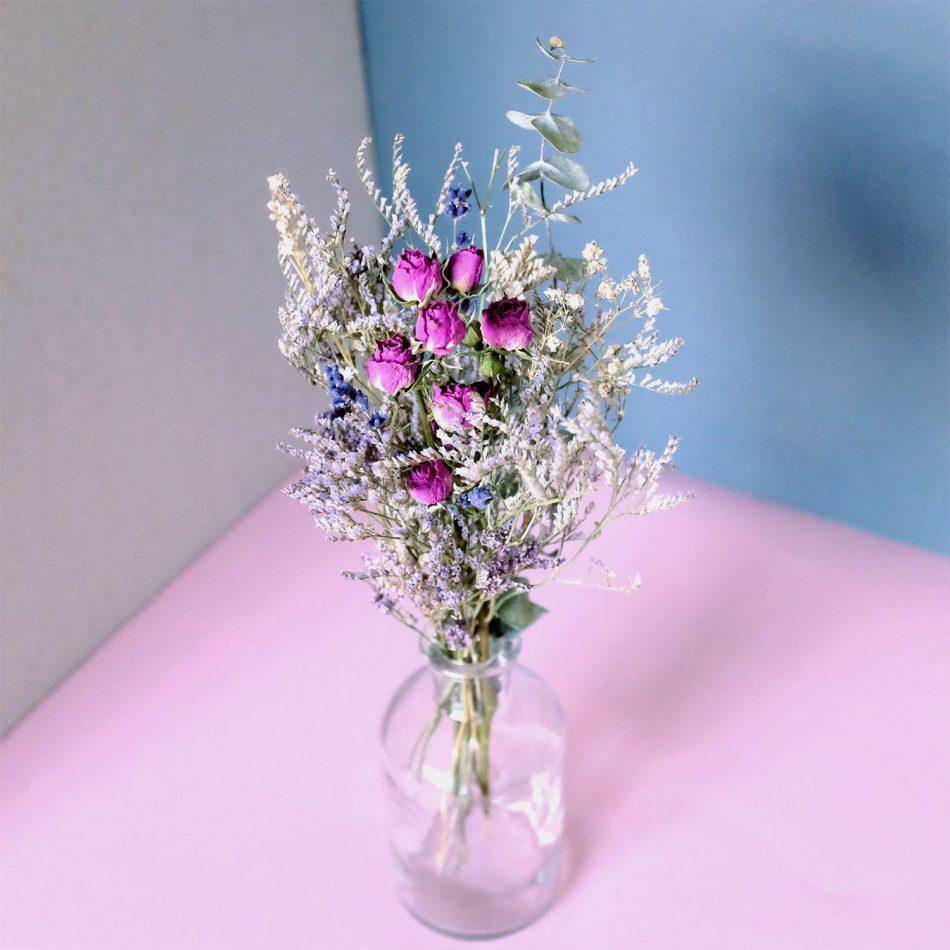 BimBamBloom_Francoise_moyenne_2colors_clear_narrow EUCA 2 V2