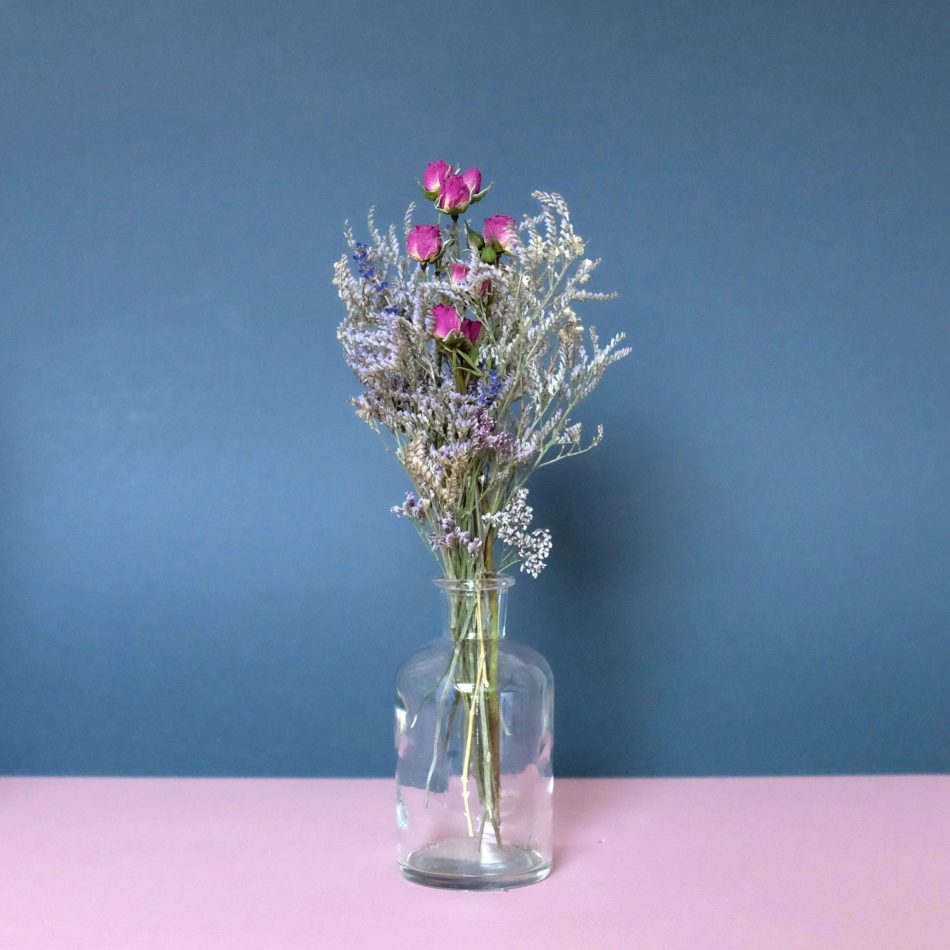 BimBamBloom_Francoise_moyenne_2colors_clear_narrow